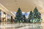 christmas trees in shopping centre